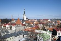 Tallin, widok na Starówkę, w oddali kościół św. Olafa