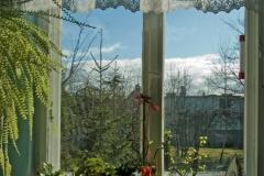 Ważne okno