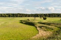 Łąki w okolicach Czarnej Wody, wspaniały kontakt z przyrodą, mgłami itp (2013)
