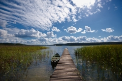 Jezioro Wigry, Rosochaty Róg (2011)