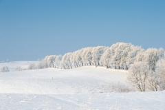 północna Suwalszczyzna, okolice wsi Okliny