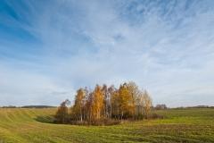 Okolice Puńska